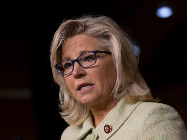 Rep. Liz Cheney (R-WY) speaks on during a press conference at the U.S. Capitol, March 26, 2019 in Washington, DC. Over the weekend, U.S. Attorney General William Barr sent a letter to Congressional leaders informing them that special counsel Robert Mueller's investigation did not find evidence of direct collusion between …