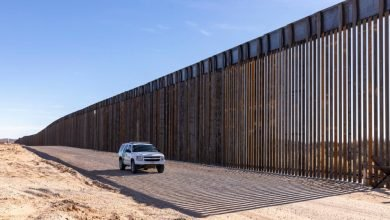 Mexican Officials Admit Trump's Border Policies Helped Them Manage Migrant Influx
