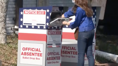 New Evidence Indicates Enough Illegal Votes In Georgia To Tip 2020 Results